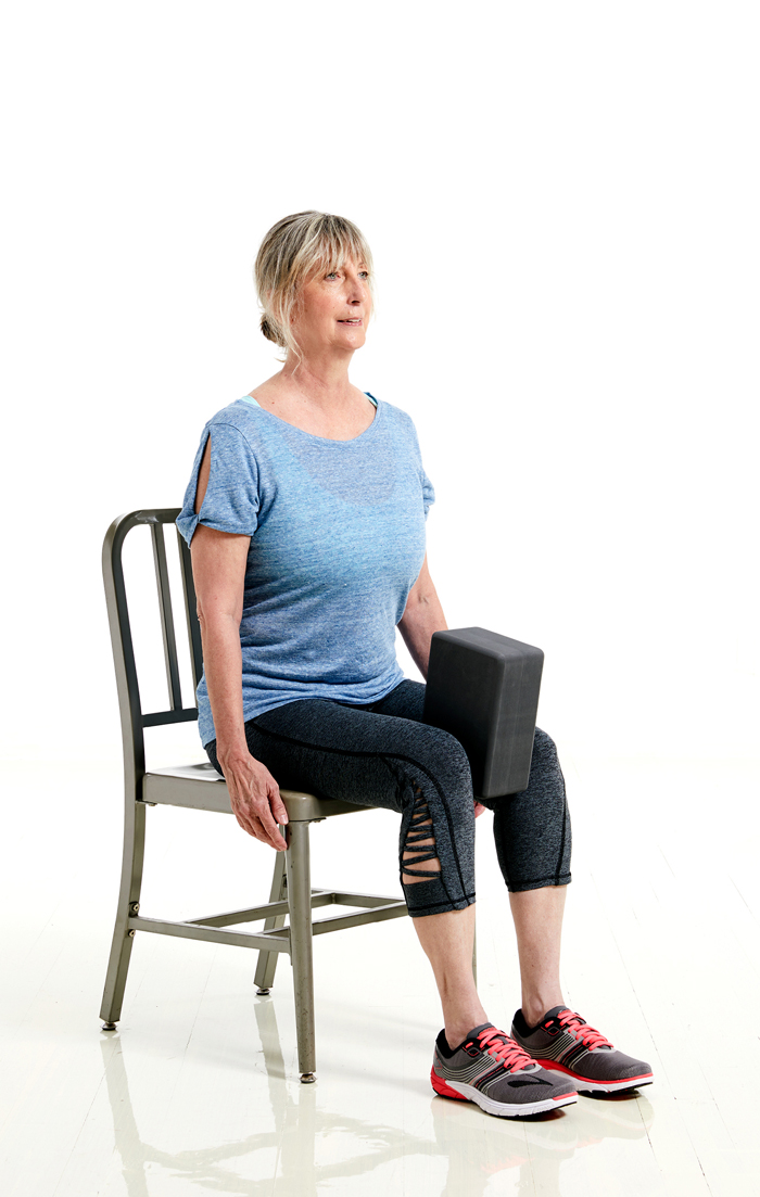 SilverSneakers Seated Adduction